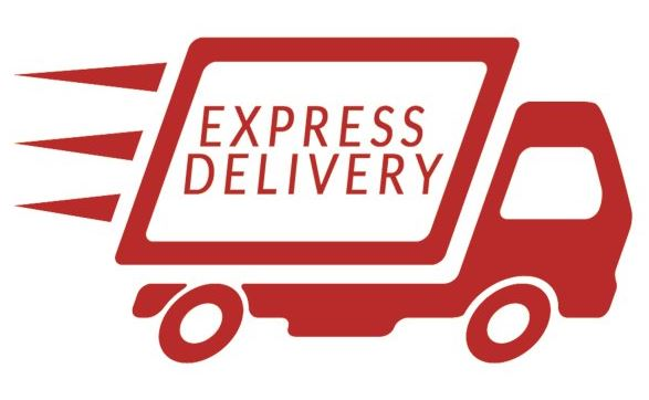 EXPRESS POSTAGE UPGRADE For Same or Next Day SHIPPING